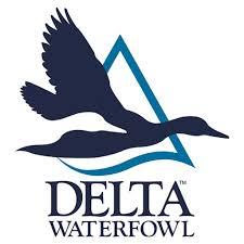 Delta Waterfoul logo